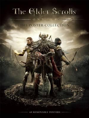 Elder Scrolls Online (Paperback)