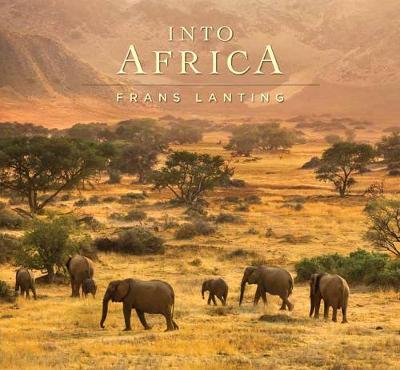 Into Africa (Hardback)