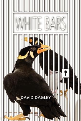 White Bars (Paperback)