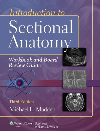 Introduction to Sectional Anatomy Workbook and Board Review Guide (Paperback)