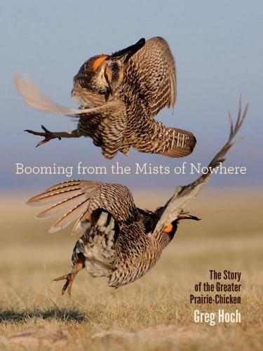 Booming from the Mists of Nowhere: The Story of the Greater PrairieChicken (Paperback)