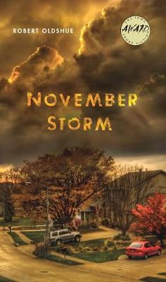 November Storm (Paperback)