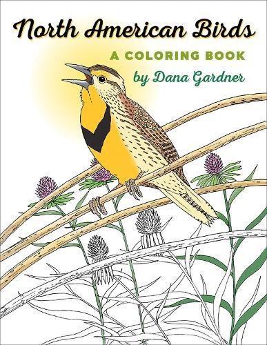 North American Birds: A Coloring Book - Bur Oak Book (Paperback)