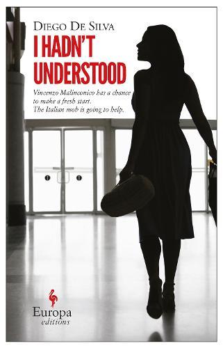 I Hadn't Understood (Paperback)
