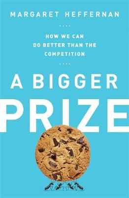 A Bigger Prize: How We Can Do Better than the Competition (Hardback)