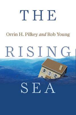 The Rising Sea (Paperback)