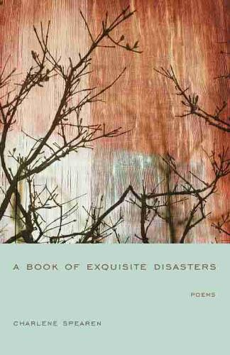 A Book of Exquisite Disasters - Palmetto Poetry Series (Paperback)