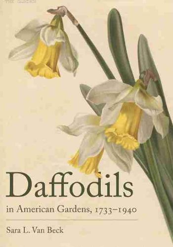 Daffodils in American Gardens, 1733-1940 (Hardback)