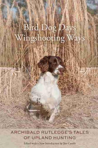 Bird Dog Days, Wingshooting Ways: Archibald Rutledge's Tales of Upland  Hunting (Hardback)