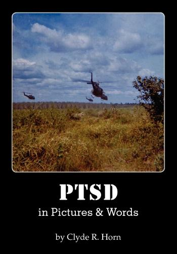 Ptsd in Pictures & Words (Paperback)