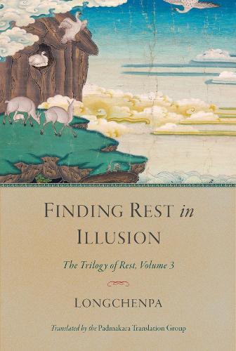 Finding Rest in Illusion: The Trilogy of Rest, Volume 3 - Trilogy of Rest (Hardback)