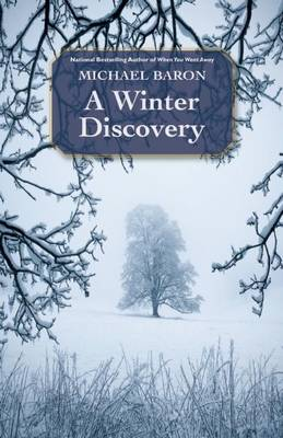 A Winter Discovery (Paperback)