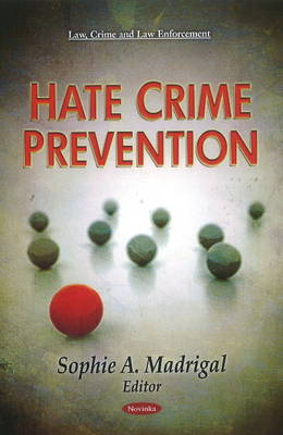 Hate Crime Prevention (Paperback)