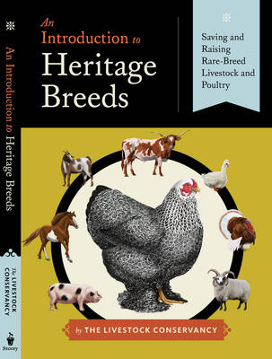 An Introduction to Heritage Breeds (Paperback)