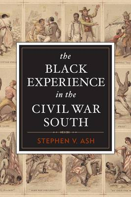 The Black Experience in the Civil War South (Paperback)