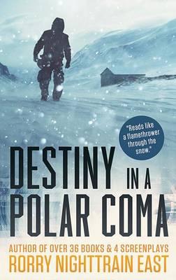 Destiny in a Polar Coma (Paperback)