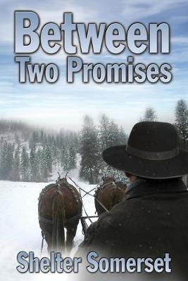 Between Two Promises (Paperback)