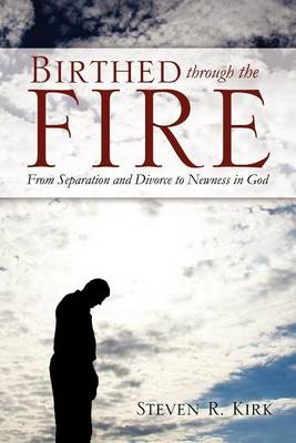 Birthed Through the Fire (Paperback)