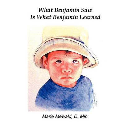 What Benjamin Saw Is What Benjamin Learned (Paperback)