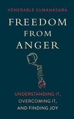 Freedom from Anger: Understanding it, Overcoming it, and Finding Joy (Paperback)