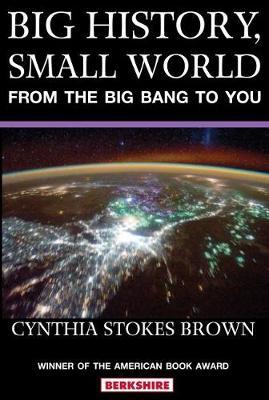 Big History, Small World (Paperback)