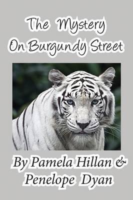 The Mystery on Burgundy Street (Paperback)