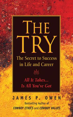 The Try: Reclaiming the American Dream (Paperback)