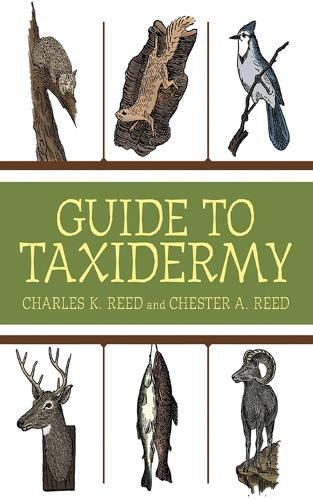 Guide to Taxidermy (Paperback)