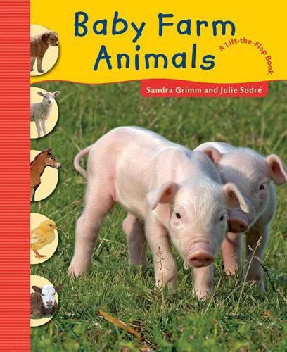 Baby Farm Animals (Hardback)