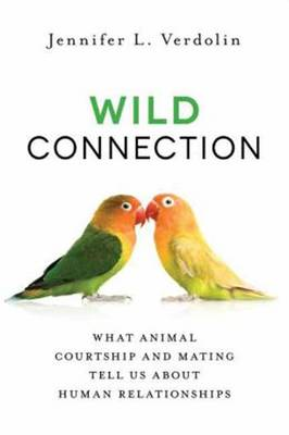 Wild Connection (Paperback)