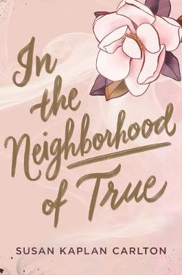 In the Neighborhood of True (Hardback)