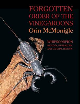 Forgotten Order of the Vinegaroons: Whipscorpion Biology, Husbandry, and Natural History (Hardback)