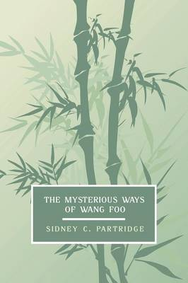 The Mysterious Ways of Wang Foo, Volume 1 (Paperback)