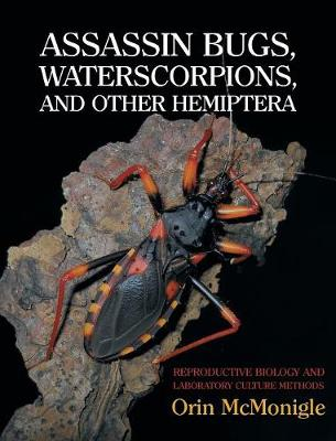 Assassin Bugs, Waterscorpions, and Other Hemiptera: Reproductive Biology and Laboratory Culture Methods (Hardback)