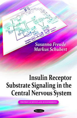 Insulin Receptor Substrate Signaling in the Central Nervous System (Paperback)