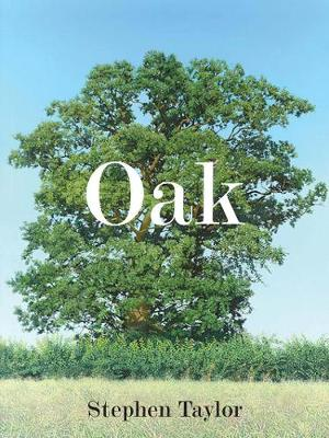 Oak One Tree, Three Years, Fifty Paintings (Hardback)