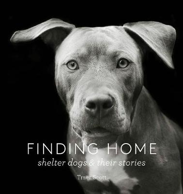 Finding Home: Shelter Dogs and Their Stories (Hardback)