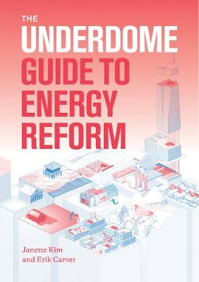 The Underdome Guide to Energy Reform (Paperback)