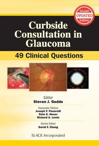 Curbside Consultation in Glaucoma: 49 Clinical Questions (Paperback)