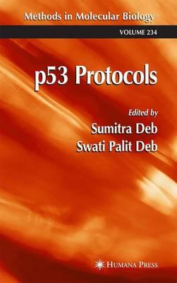 p53 Protocols - Methods in Molecular Biology 234 (Paperback)