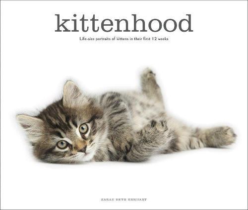 Kittenhood (Hardback)
