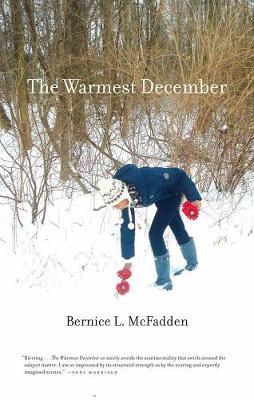 The Warmest December (Paperback)