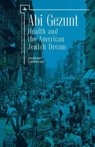 Abi Gezunt: Health and the American Jewish Dream (includes The Lindex Study: An Ethnic Database) - Jewish Identities in Post-Modern Society (Hardback)