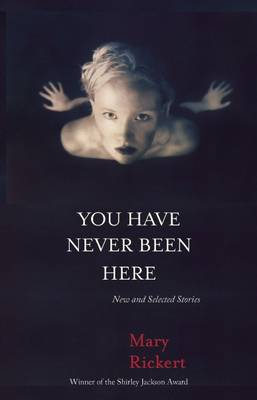 You Have Never Been Here: New and Selected Stories (Paperback)