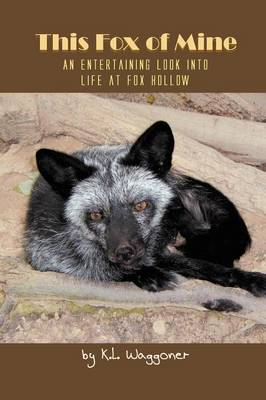 This Fox of Mine: An Entertaining Look into Life at Fox Hollow (Paperback)