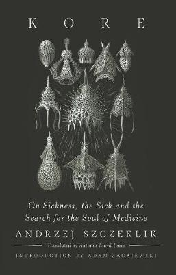 Kore: On Sickness, the Sick, and the Search for the Soul of Medicine (Hardback)