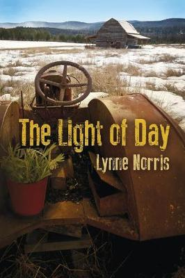 The Light of Day (Paperback)