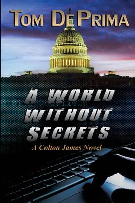 A World Without Secrets (Paperback)