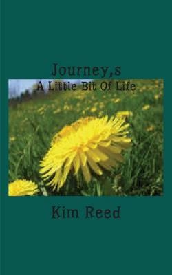 Journey's: A Little Bit of Life (Paperback)