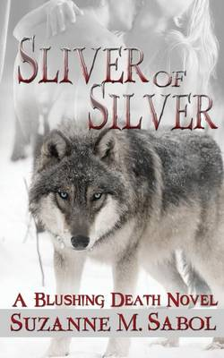 Sliver of Silver (Paperback)